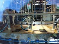 ヴィルタン収穫農園の乳搾りマシーン