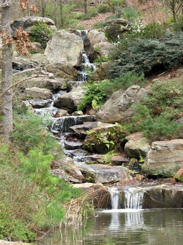 Joyful Reflections Garvin Woodland Gardens Hot Springs Ar