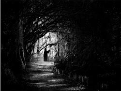 Contacta con la oscuridad