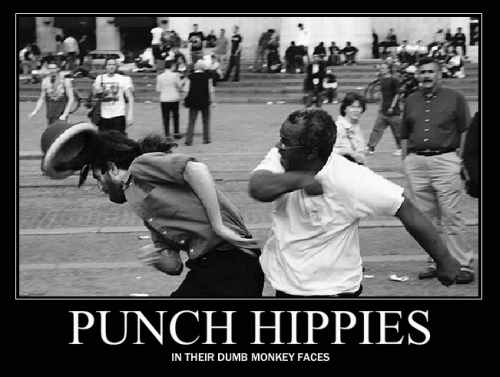 punch a hippie