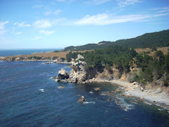 The Mendonoma Coast, Fisk Mill Point/Salt Point- Sonoma County