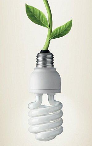 lampadina basso consumo : eliotropo: Lampade a basso consumo, mai nella spazzatura