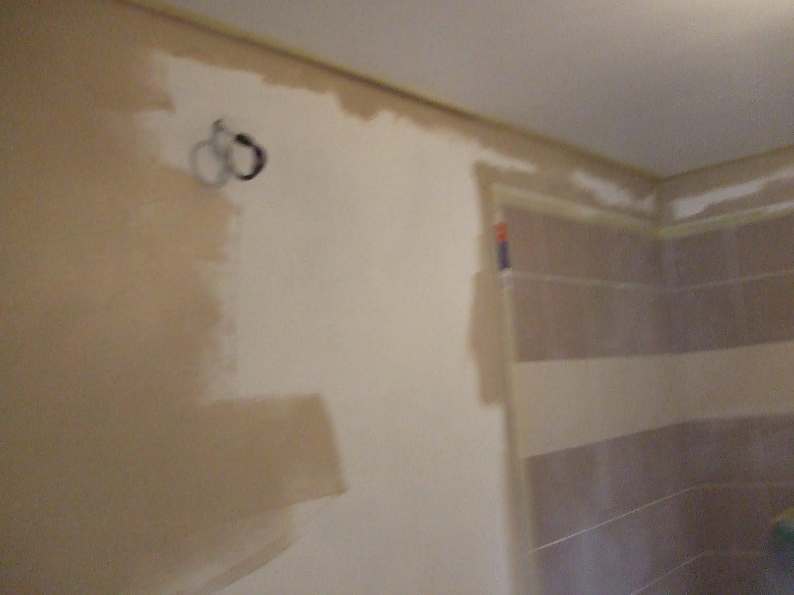 S ances de bricolage salle de bain suite et fin for M bricolage salle de bain