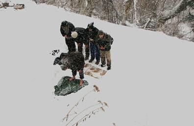 Shalat Di Gurun Salju