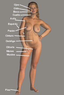 10 Titik Paling Sensitif pada Wanita