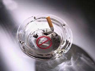 Manfaat Puntung Rokok