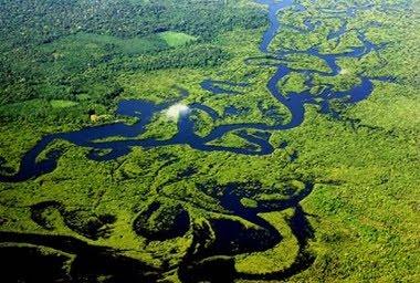 AMAZÔNIA... SUAS ÁGUAS COMO GIGANTESCAS SERPENTES ENTRELAÇADAS AO INFINITO DOM DA CRIAÇÃO...