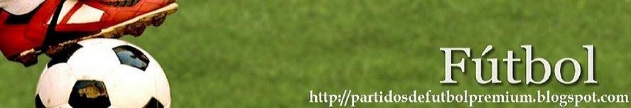 Partidos de futbol Premium online
