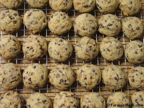... Easy Baby Shortbread Cookies with Mini Chocolate Chips and Toffee Bits