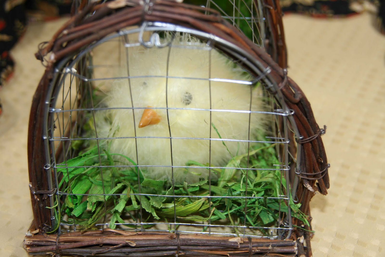 http://1.bp.blogspot.com/_h6D13_4JxwA/S6z4vSzVPzI/AAAAAAAAGFY/hwRyosA-lNg/s1600/CHICKEN-FOR-EASTER-IN-CAGE.jpg