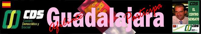 Centro Democrático y Social - Guadalajara