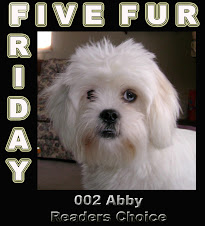 My Five Fur Friday Interview w/Bark Kent...