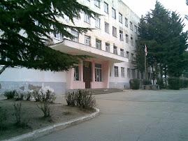 115-ე საჯარო სკოლა