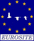 EUROSITE ESPÁTULA