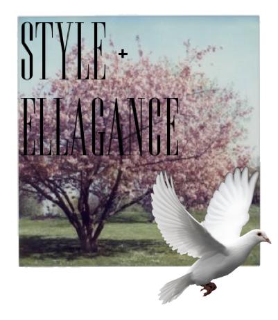 style & ellagance