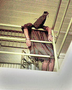 new toture1 Point and Shoot: How the Abu Ghraib Images Redefine Photography (2005)