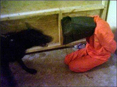 capt4 Point and Shoot: How the Abu Ghraib Images Redefine Photography (2005)
