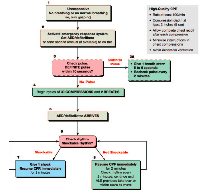 american heart association acls algorithms 2010 pdf