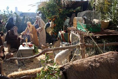 Fiestas tradicionales de tu pueblo/ciudad