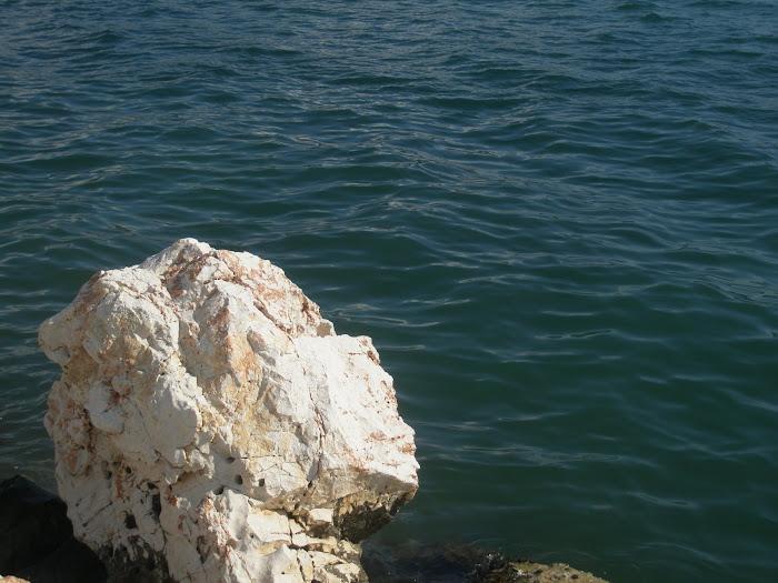 Κεφαλη του Μεγαλου Αλεξανδρου  [ με τον τροπο του Σκοπα  Αρχαιου Ελληνα  γλυπτη ] Αστακος Ακαρνανια