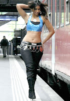 Actress, Ileana, Hot, Navel, Show, Photos