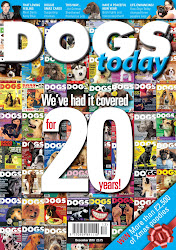 The December issue of Dogs Today