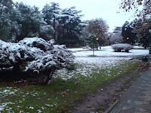 Nieve en Monte Grande