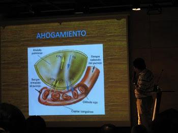 teoricos,2008, valparaiso