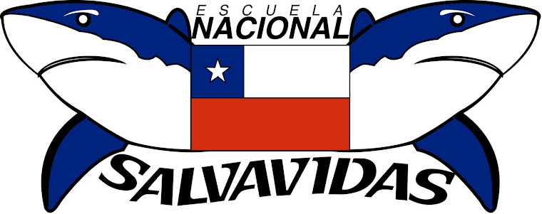 Salvavidas de Chile