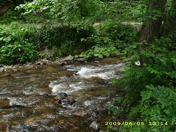 pe Râul Mic