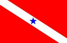 Bandeira do Pará.
