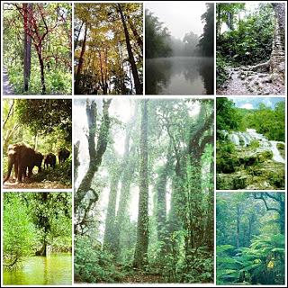 Wildlife Sanctuary, Khao Soi Dao