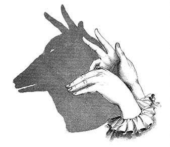 make animals by shadow of your hand