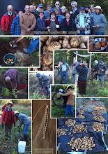 SPUDS Harvest, Oct. 09