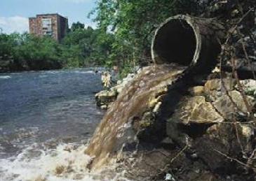Evitemos la Contaminación Ambiental