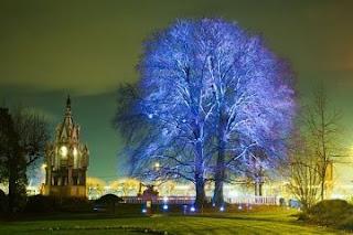 Genève: Festival arbres et lumière