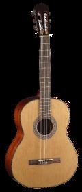mademoiselle guitare