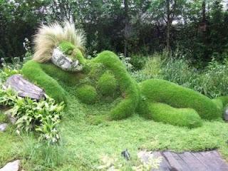 Plantes sculptées