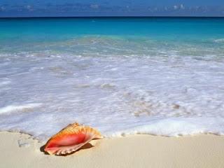 Adieu à la mer