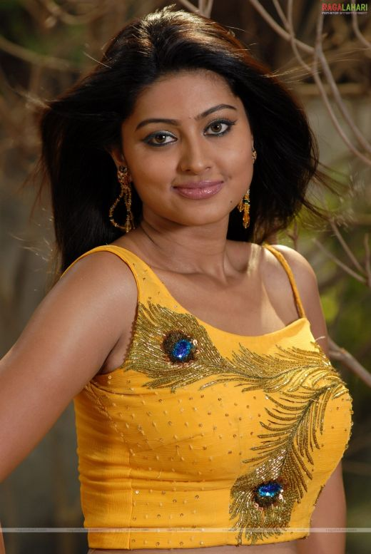 Tollywood Hot Pics: Meena Hot Navel Stills {22}