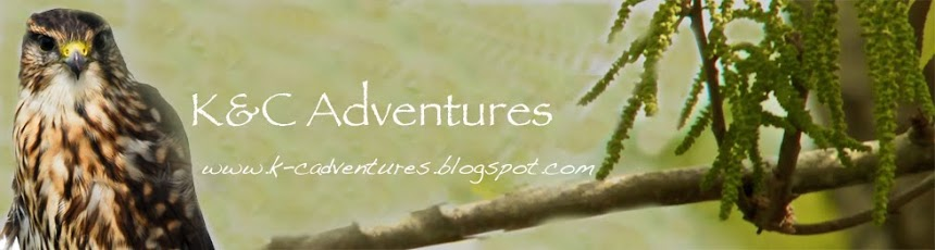 K&C Adventures