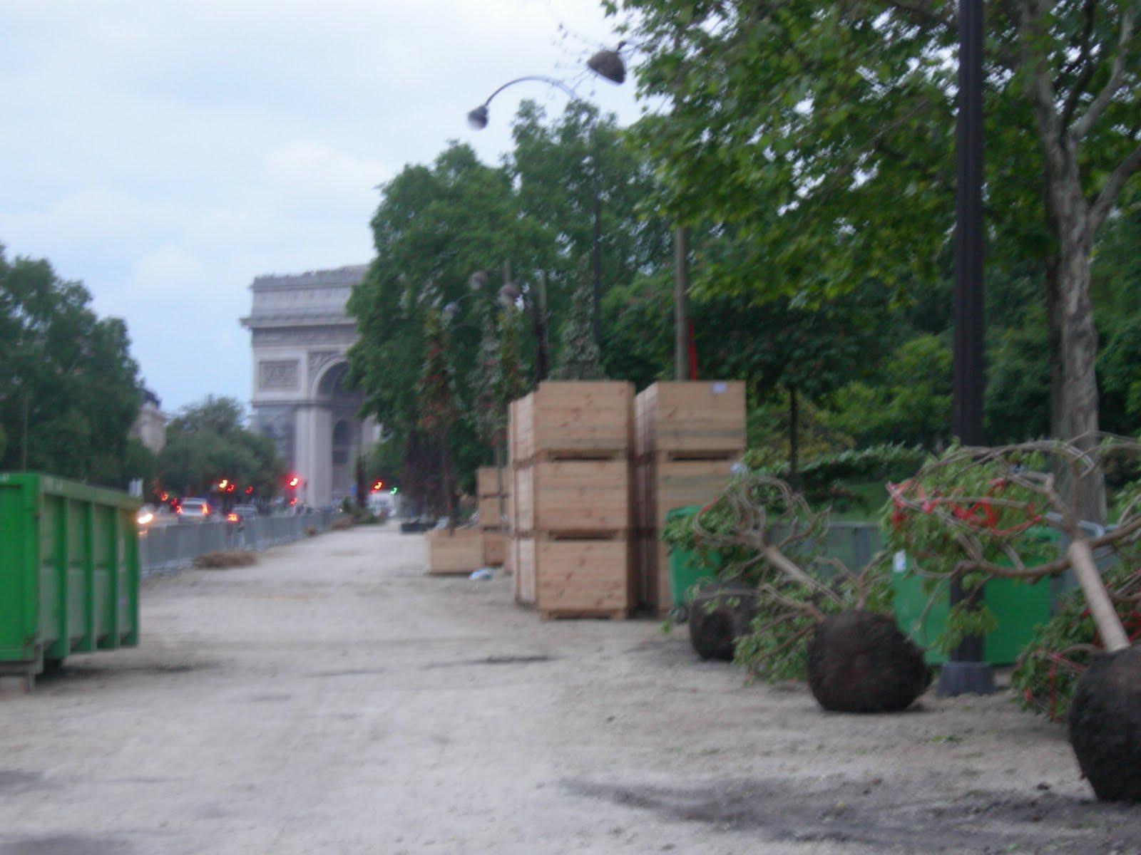 Le parisien liberal conseil cologie facile for Conseil sur les plantes