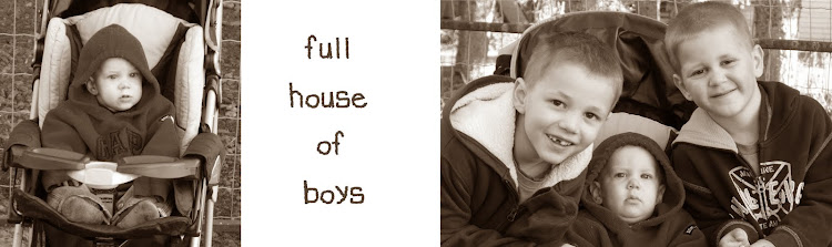 Full House of Boys