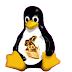 Herramientas para detectar ataques en Linux.