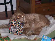 Dina y su regalo de Reyes