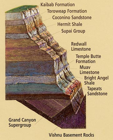 Not Without My Cookah Grand Canyon Rock Layers