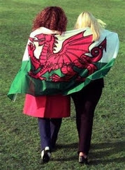 Welsh Flag - Wales