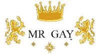 LGBT news, gay news, mr gay