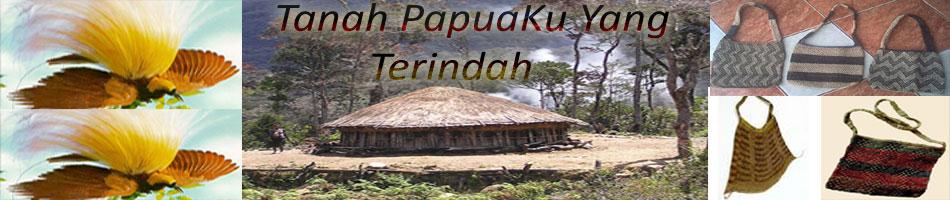 Noken Papua