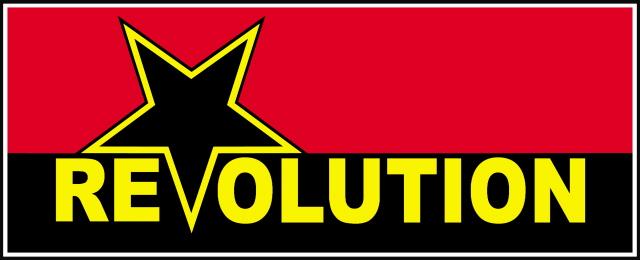 revolution Surfer